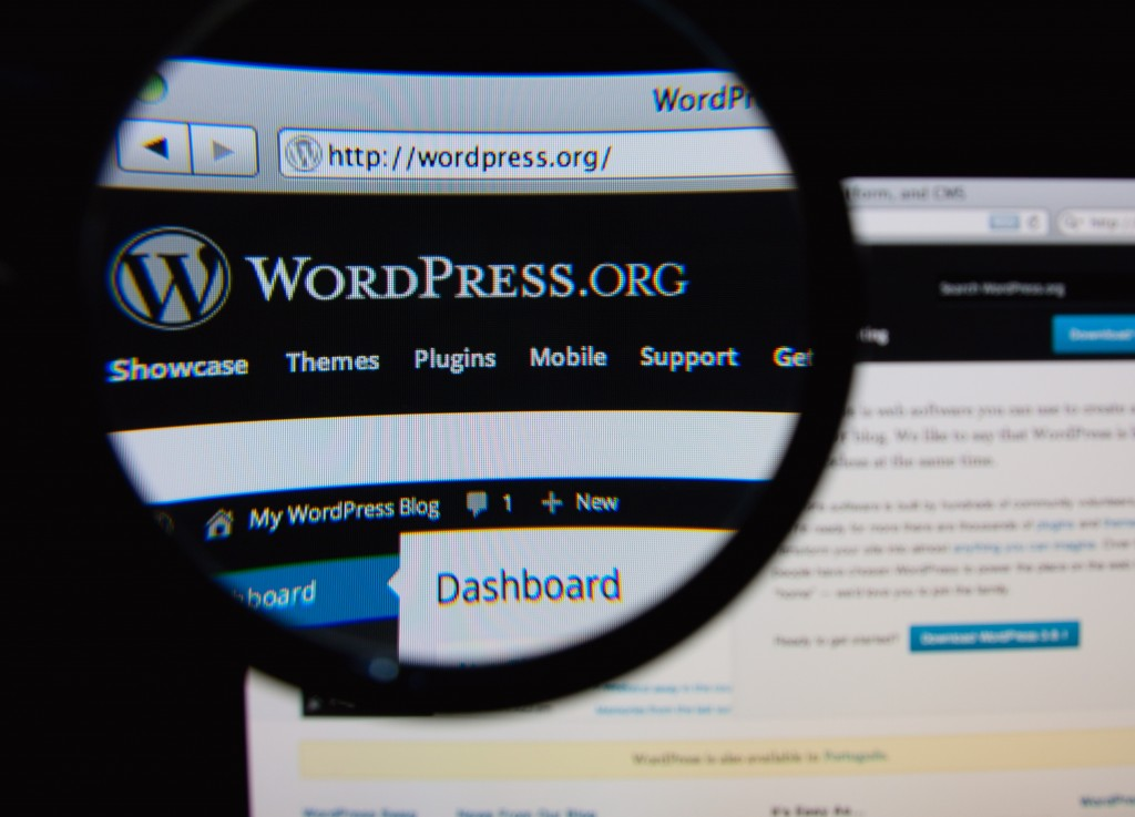 WordPress for Dummies – An  Excellent Begginner's Guide